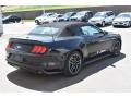 Ford Mustang EcoBoost Premium Convertible Shadow Black photo #6