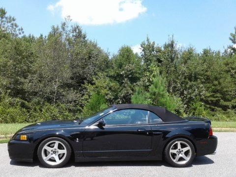 Black 2003 Ford Mustang Cobra Convertible