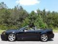 Ford Mustang Cobra Convertible Black photo #2