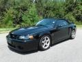 Ford Mustang Cobra Convertible Black photo #3