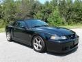 Ford Mustang Cobra Convertible Black photo #5