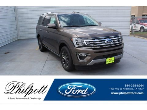 Stone Gray Metallic 2019 Ford Expedition Limited