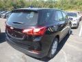 Chevrolet Equinox LS Mosaic Black Metallic photo #5