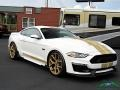 Ford Mustang Shelby GT-H Coupe Oxford White photo #7