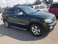 Jeep Grand Cherokee Limited 4x4 Natural Green Pearl photo #24