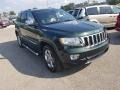 Jeep Grand Cherokee Limited 4x4 Natural Green Pearl photo #29