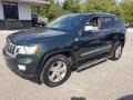 Jeep Grand Cherokee Limited 4x4 Natural Green Pearl photo #31