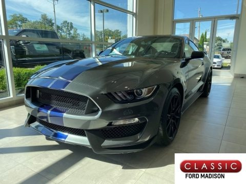 Magnetic 2019 Ford Mustang Shelby GT350