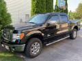 Ford F150 XLT SuperCrew 4x4 Tuxedo Black photo #1