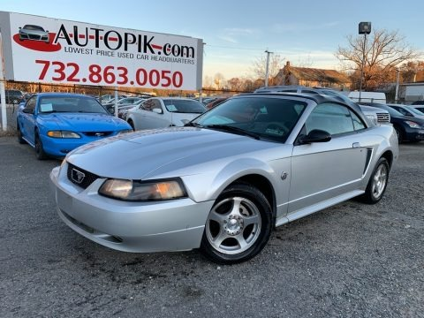 Silver Metallic 2004 Ford Mustang Convertible