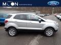 Ford EcoSport SE 4WD Moondust Silver Metallic photo #1
