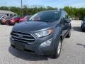 Ford EcoSport SE Smoke Metallic photo #1