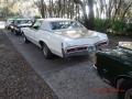 Pontiac Grand Prix SSJ Hurst Cameo White/Fire Frost Gold photo #11