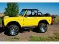 Ford Bronco 4x4 Canary Yellow photo #8