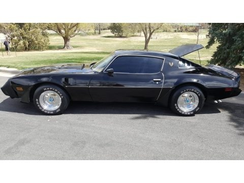 Starlight Black 1980 Pontiac Firebird Turbo Trans Am