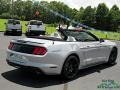 Ford Mustang EcoBoost Convertible Iconic Silver photo #5