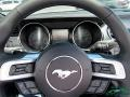 Ford Mustang EcoBoost Convertible Iconic Silver photo #14