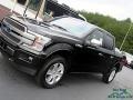 Ford F150 Platinum SuperCrew 4x4 Agate Black photo #28