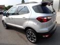 Ford EcoSport SES 4WD Moondust Silver Metallic photo #3