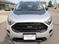 Ford EcoSport SES 4WD Moondust Silver Metallic photo #9