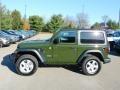 Jeep Wrangler Sport 4x4 Sarge Green photo #9