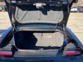 Dodge Challenger GT AWD Pitch Black photo #11