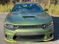 Dodge Charger R/T Scat Pack F8 Green photo #3