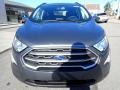 Ford EcoSport SE 4WD Smoke Metallic photo #9