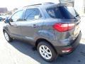 Ford EcoSport SE 4WD Smoke Metallic photo #3