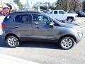 Ford EcoSport SE 4WD Smoke Metallic photo #7