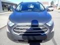Ford EcoSport SE 4WD Smoke Metallic photo #9
