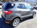 Ford EcoSport SE 4WD Smoke Metallic photo #6