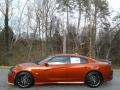 Dodge Charger Scat Pack Sinamon Stick photo #1