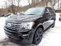 Ford Expedition XLT 4x4 Agate Black photo #5
