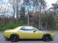 Dodge Challenger R/T Scat Pack Gold Rush photo #5