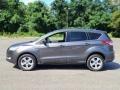 Ford Escape SE 4WD Magnetic Metallic photo #2