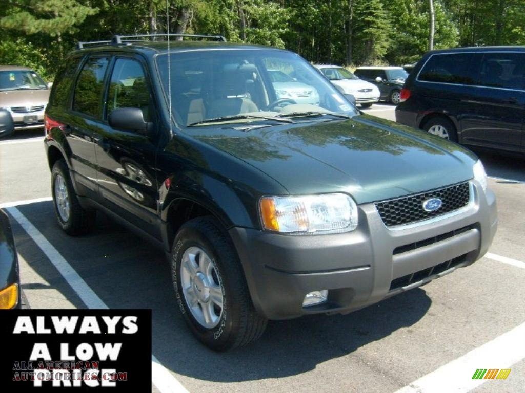2003 ford escape xlt v6 4wd in aspen green metallic. Black Bedroom Furniture Sets. Home Design Ideas