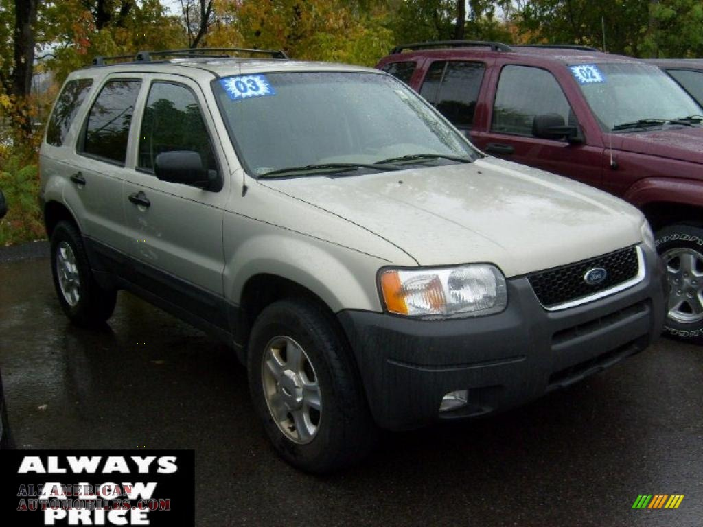 2003 ford escape xlt v6 4wd in gold ash metallic a91157. Black Bedroom Furniture Sets. Home Design Ideas