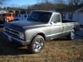 Chevrolet C/K C20 Regular Cab Medium Gray Metallic photo #3