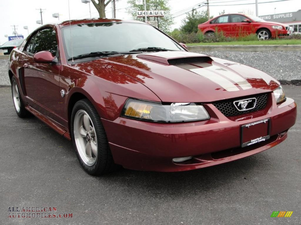 2004 mustang gt anniversary edition   auto today.