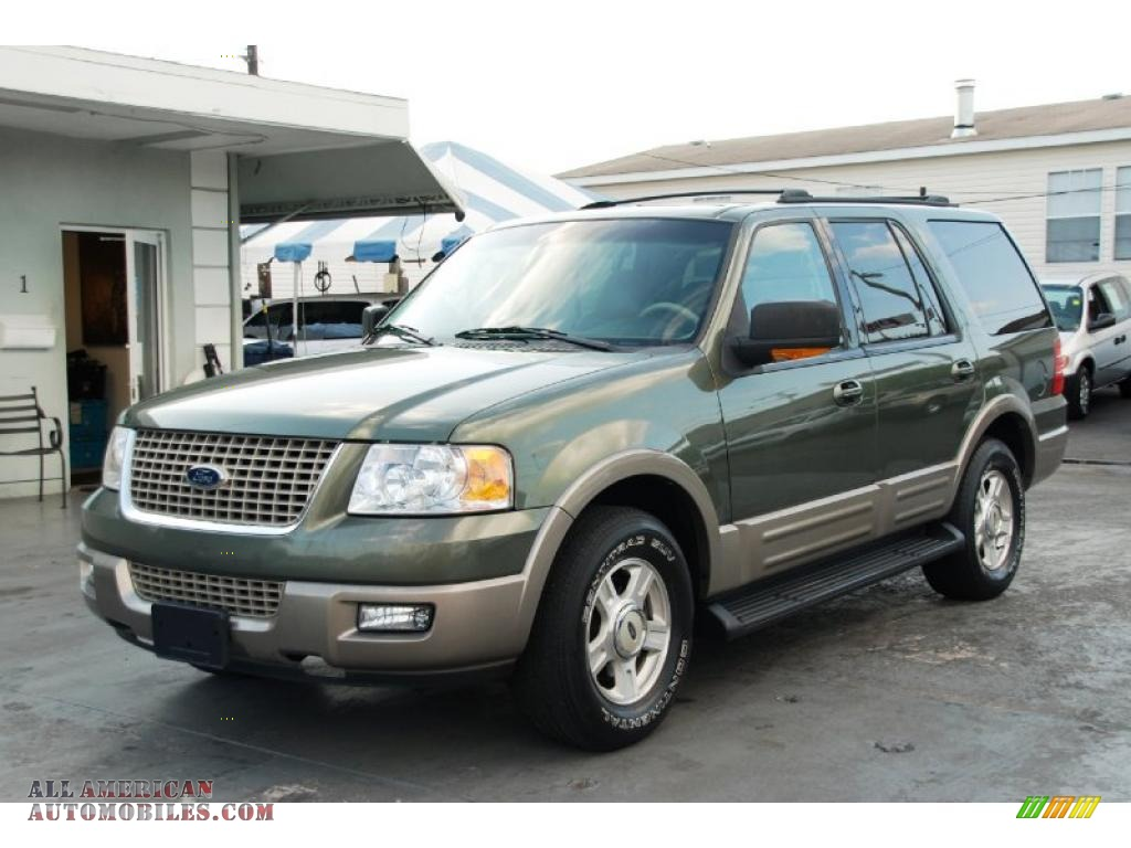 2003 ford expedition eddie bauer in estate green metallic photo 7. Cars Review. Best American Auto & Cars Review