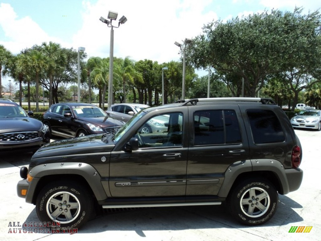 2005 Jeep Liberty Renegade 4x4 In Dark Khaki Pearl Photo 10 Light Graystone