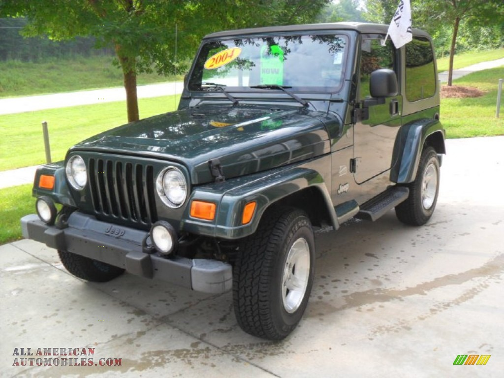 2004 jeep wrangler sahara 4x4 in shale green metallic. Black Bedroom Furniture Sets. Home Design Ideas