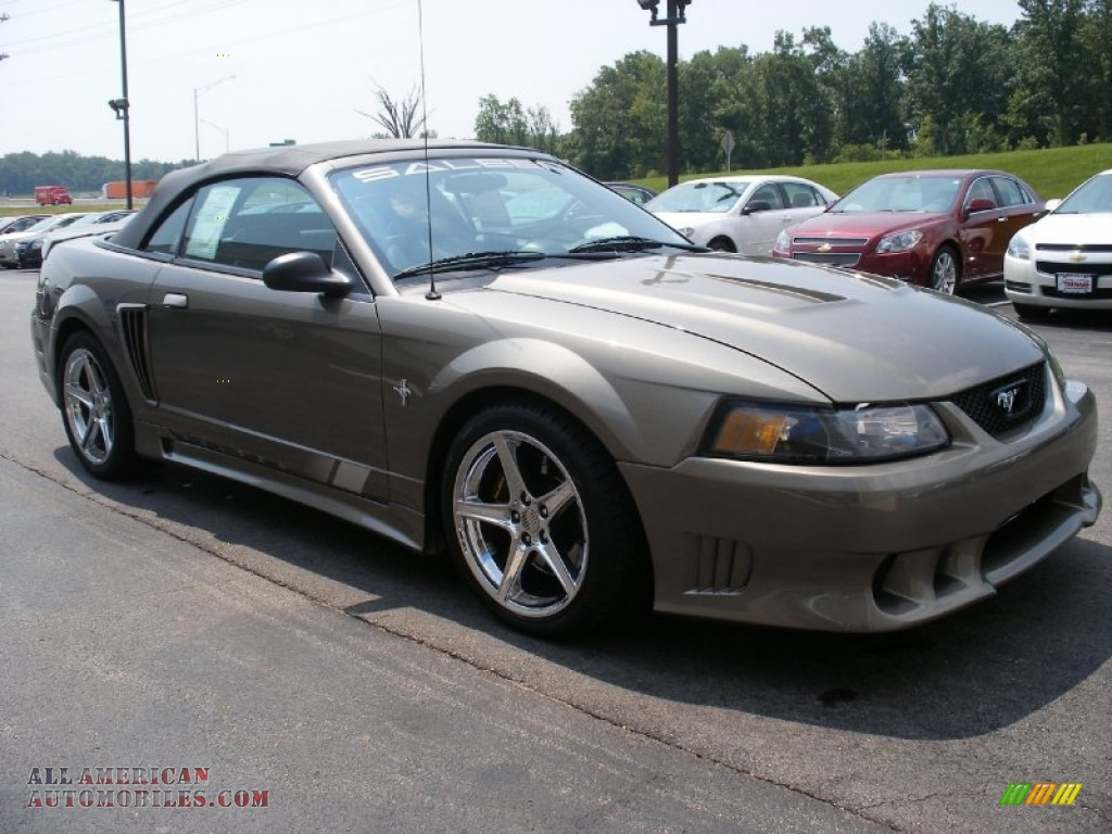 Jim Trenary Chevrolet >> 2001 Ford Mustang Saleen S281 Supercharged Convertible in Mineral Grey Metallic photo #12 ...