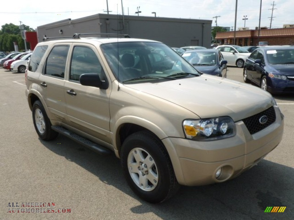 2007 Ford Escape Xlt V6 4wd In Dune Pearl Metallic