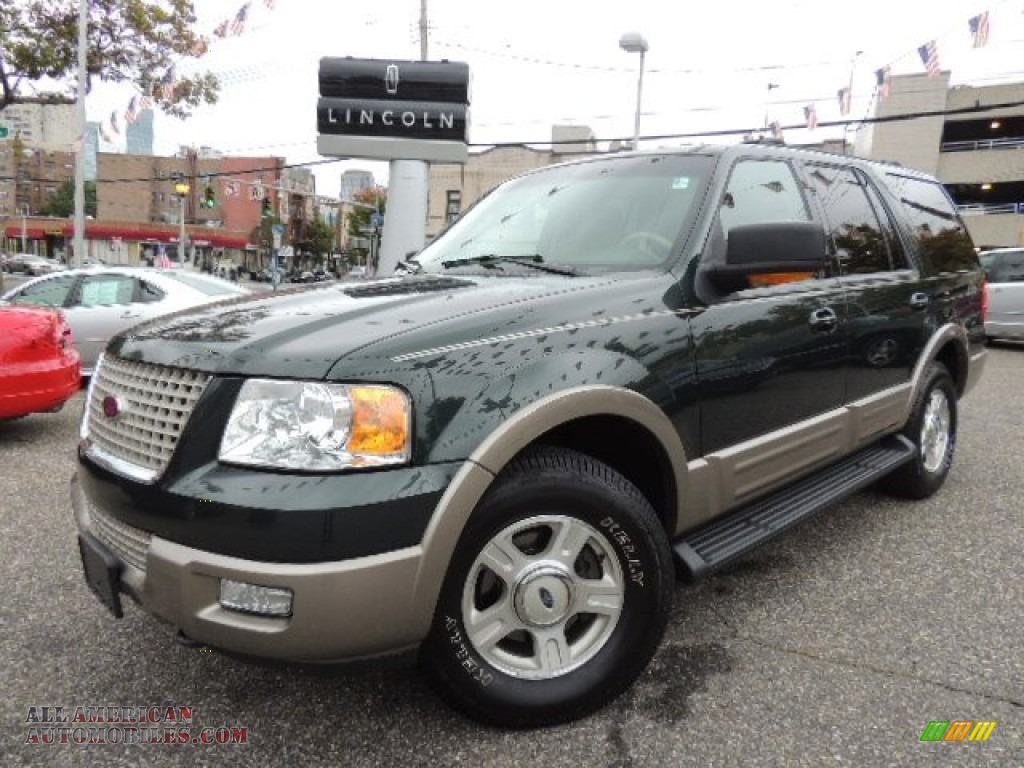 2003 ford expedition eddie bauer 4x4 in aspen green. Black Bedroom Furniture Sets. Home Design Ideas