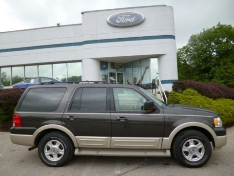 Dark Stone Metallic 2005 Ford Expedition Eddie Bauer 4x4
