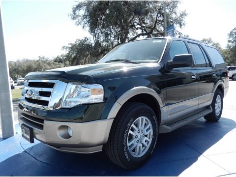 Green Gem 2014 Ford Expedition XLT