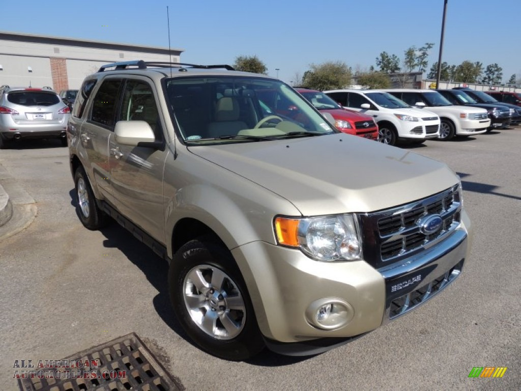 2012 ford escape limited v6 in gold leaf metallic a47352 all american automobiles buy. Black Bedroom Furniture Sets. Home Design Ideas