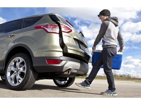 Ingot Silver 2014 Ford Escape S